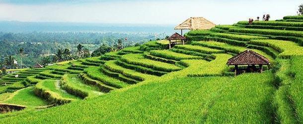 Bali Beyond the Mainstream