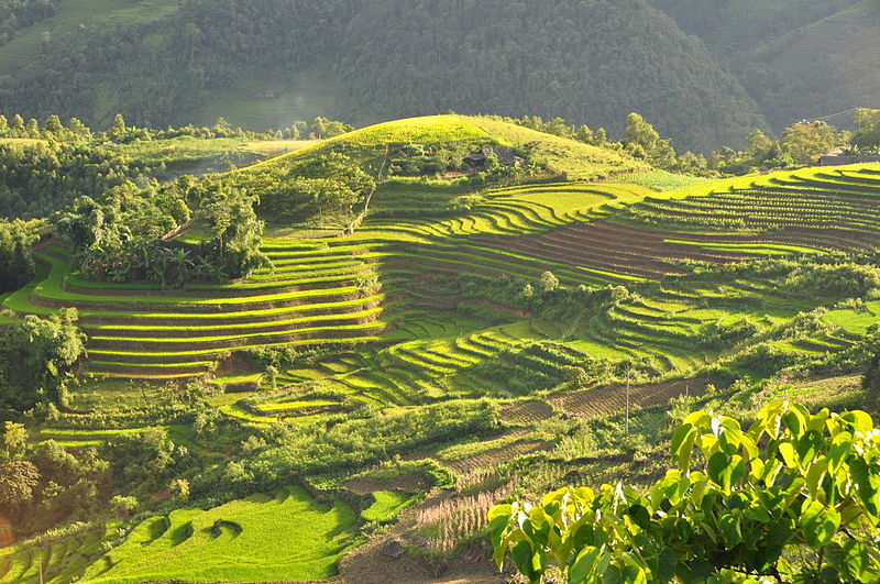 Go Take a Hike! The 10 Best Hiking Spots in Asia