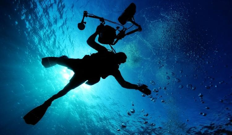 Your First Diving Experience: What to Expect from it